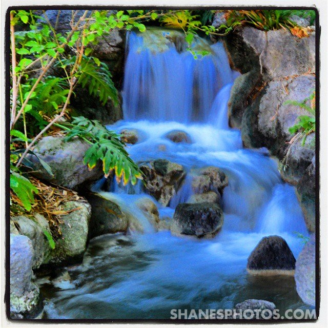 Everytime I go looking around #Disneyland I find a new water feature. @disneyland #gethappiercontest #Disneyland60Contest